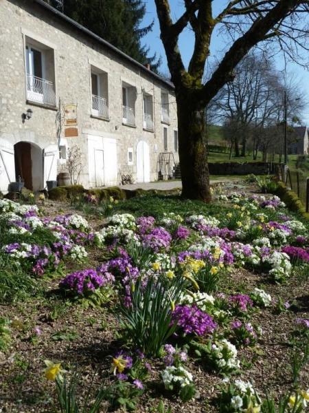 Maison Jarso - 4 chambres d'hôtes situées au cœur de la Bourgogne dans le Parc Régional du Morvan.
