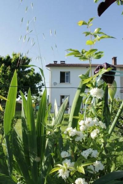 Maison  avec grand jardin aux portes d'Albi