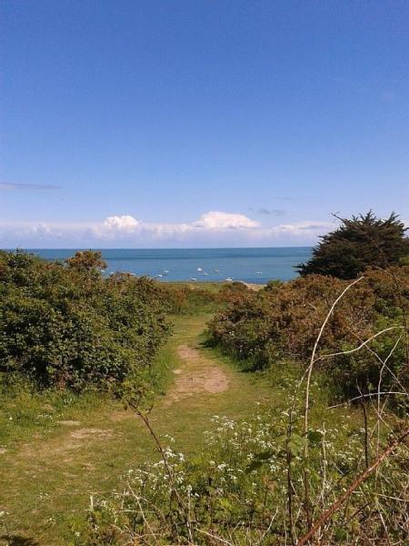 Petit chemin à travers la dune qui mène à la plage