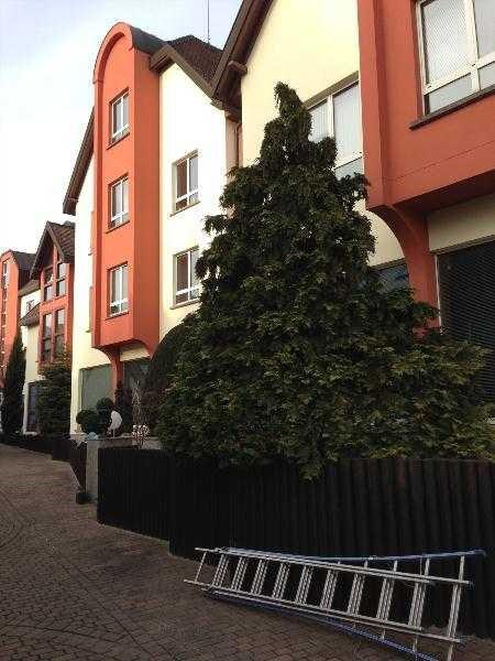 location bureau strasbourg bas rhin 67 536 m r f rence n 588363. Black Bedroom Furniture Sets. Home Design Ideas