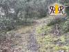 Terrain Boisé 30 000 e Magnifique terrain boisé en pente de 2, Ménerbes
