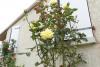 4pièces - 80 m² Stéphane Grandener A 12 Mn de La Rochelle sur la commune de Villedoux, toutes commodités à pied ...