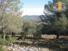A vendre terrain à bâtir de 1000 m² avec vue dominante sur la Sa, Nans-les-Pins
