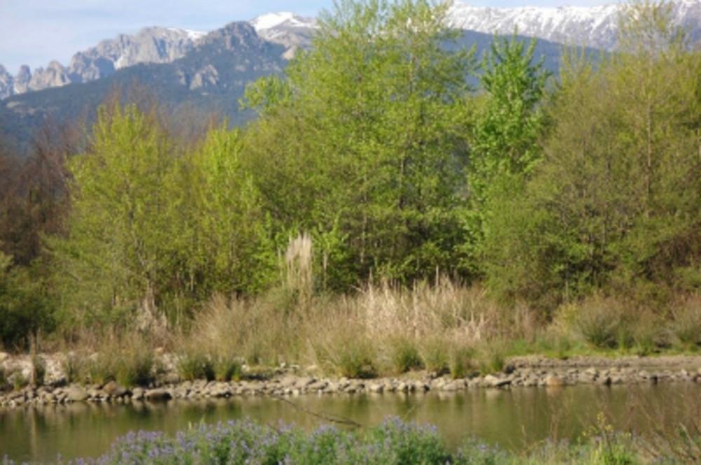 la riviere à 1km