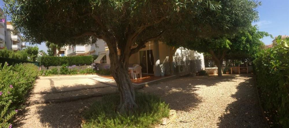 Le jardin privé (olivier) et la terrasse