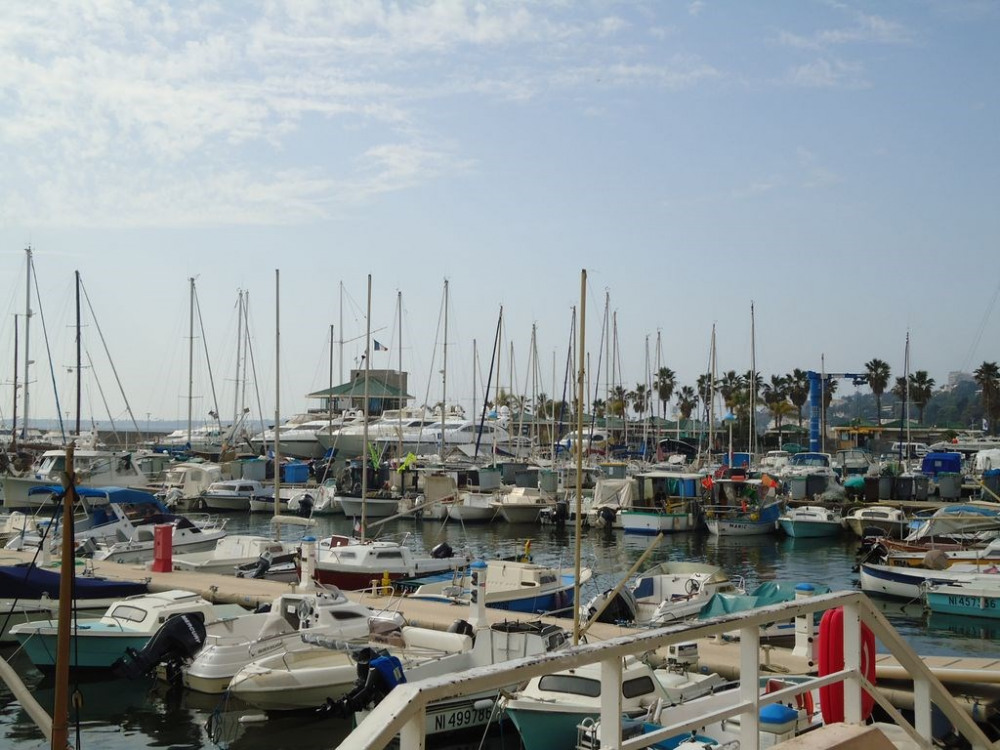 le port Camille Rayon