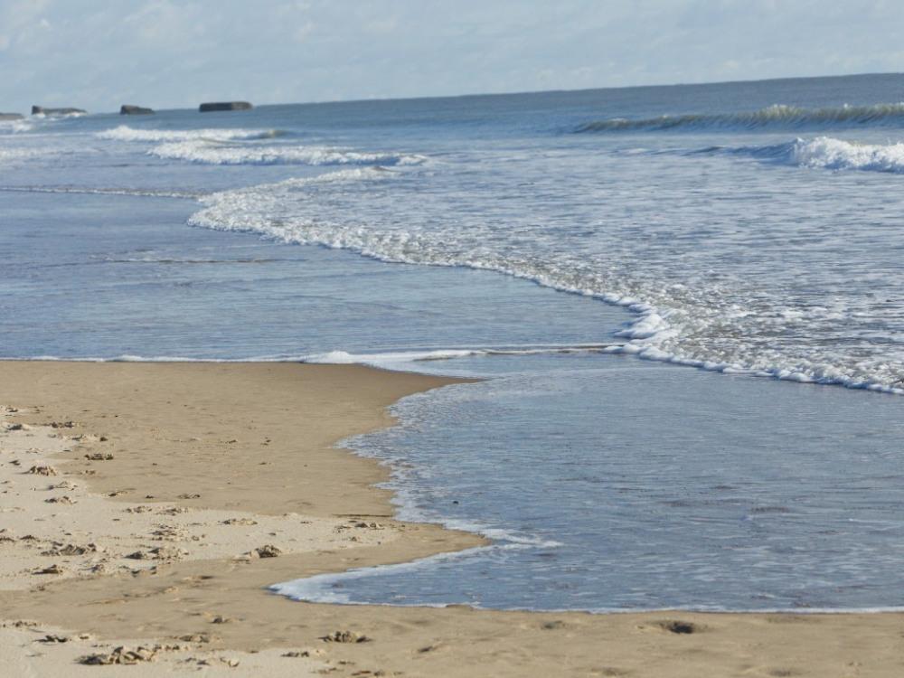 plage de la côte sauvage