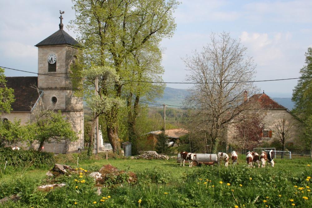 au bord du village de Hautepierre