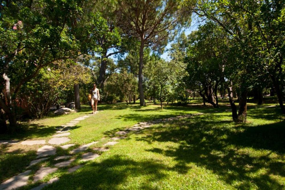 Une partie du parc