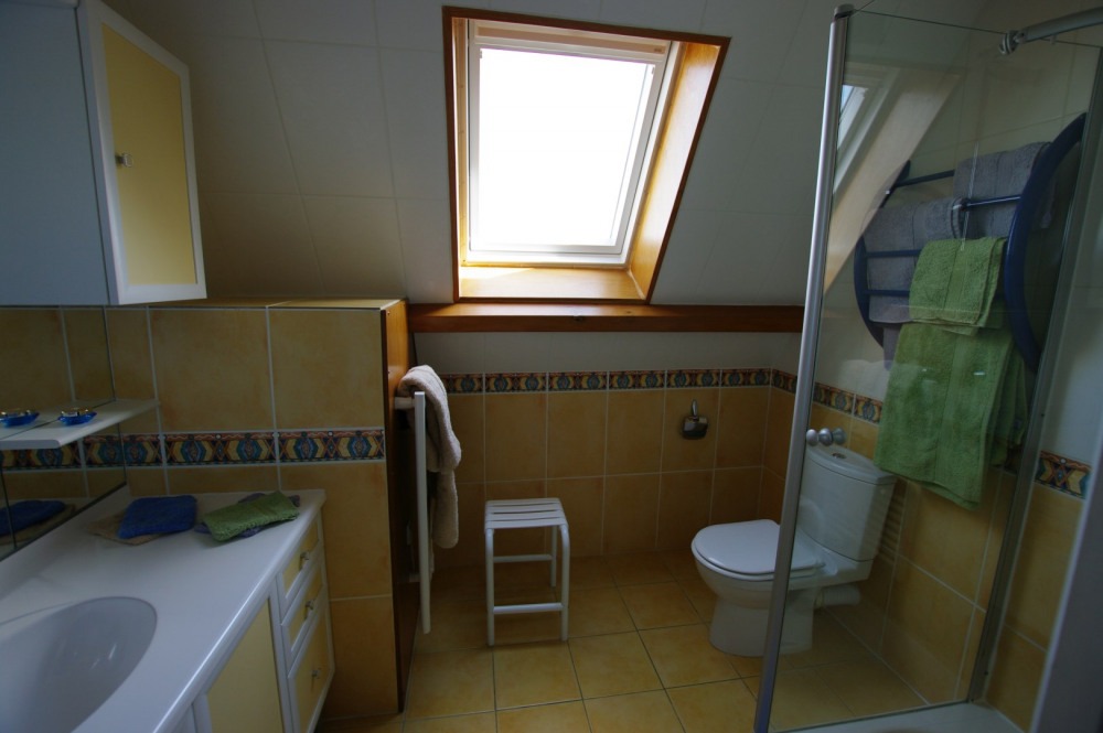 SDB privative Chambre 2 (lavabo, douche WC)