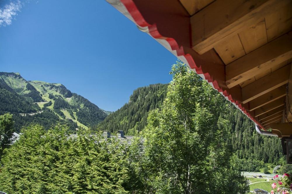 vue de la montagne depuis le balcon