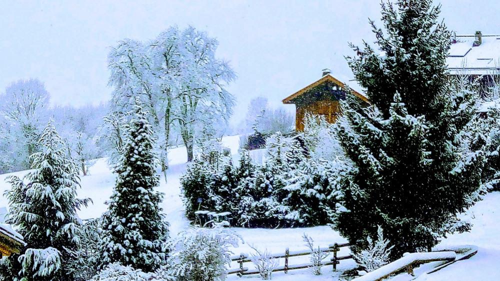 La vue en hiver