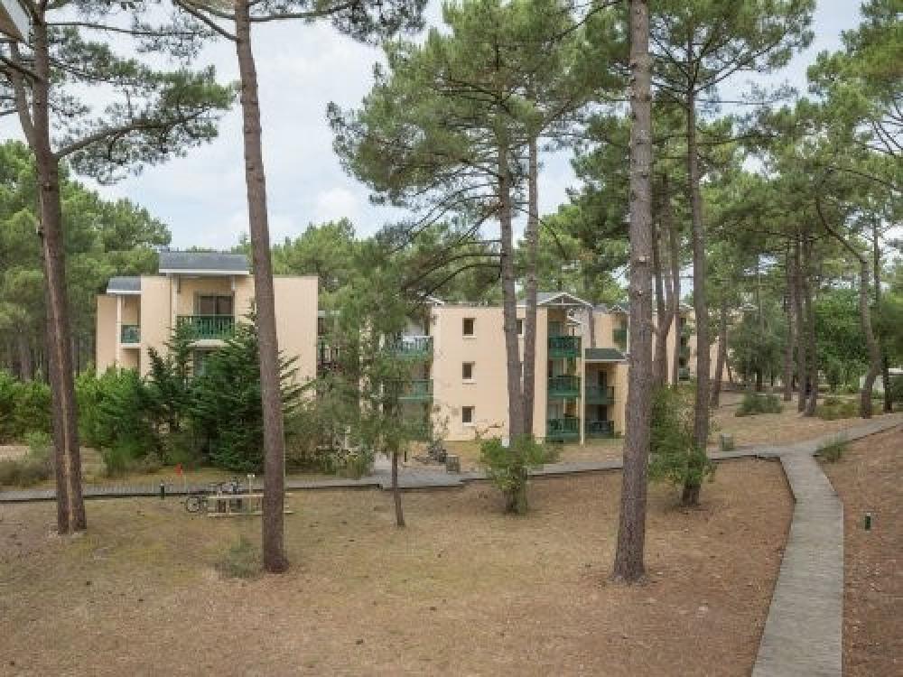 Résidence Les Grands Pins - Appartement 2 pièces 4 personnes Standard