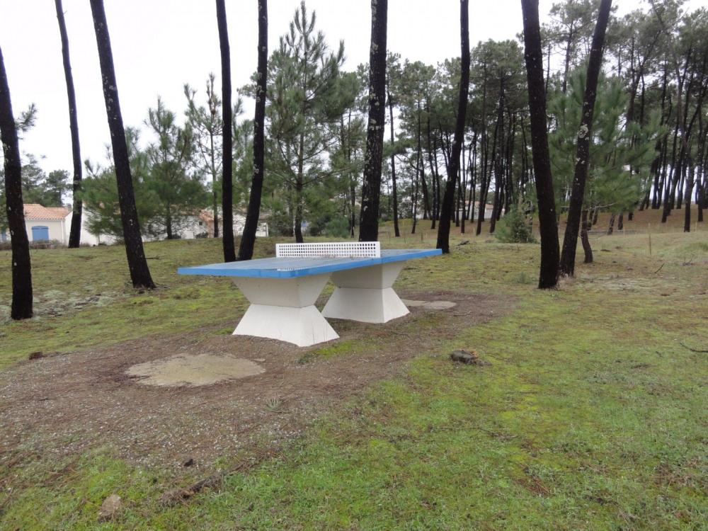 table ping pong dans la pinède