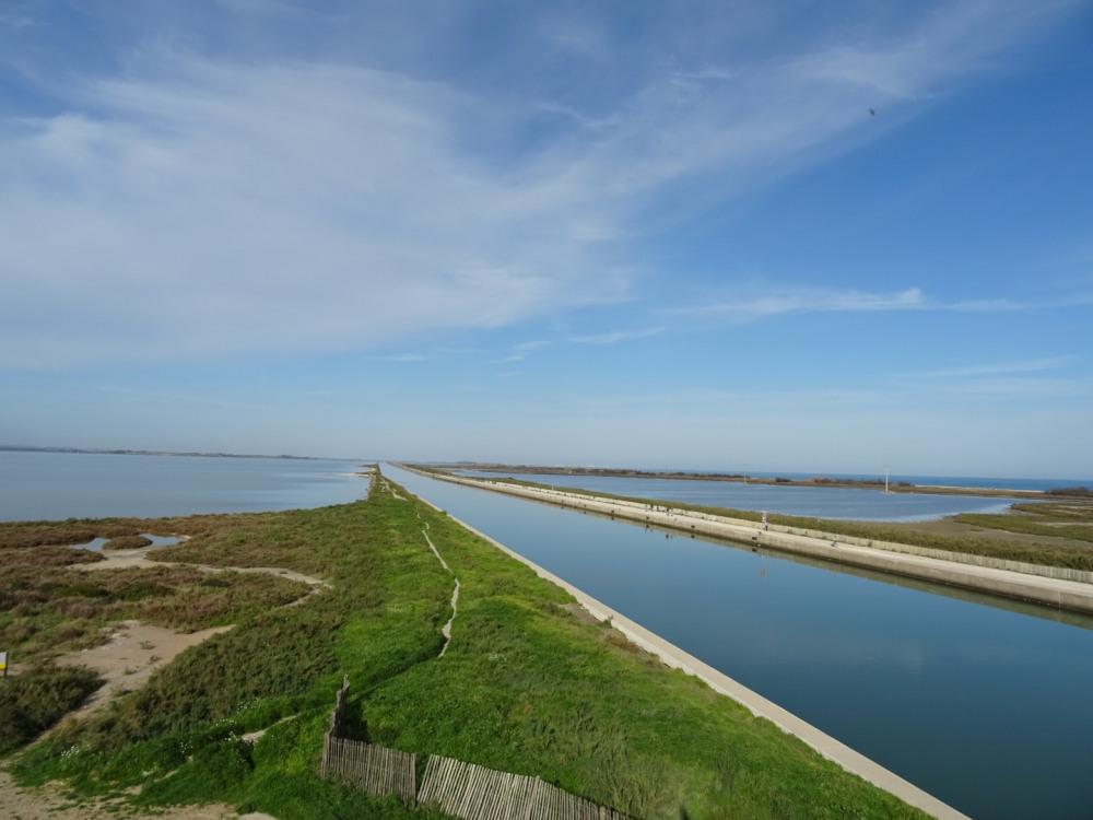 l'étang puis le canal du midi, le lido et enfin la mer. C'est magique