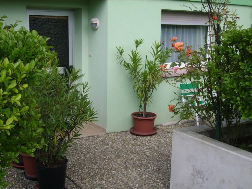 terrasse aménagé avec auvent