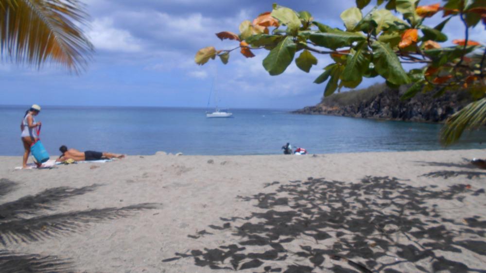 plage de petit anse a 1.5km