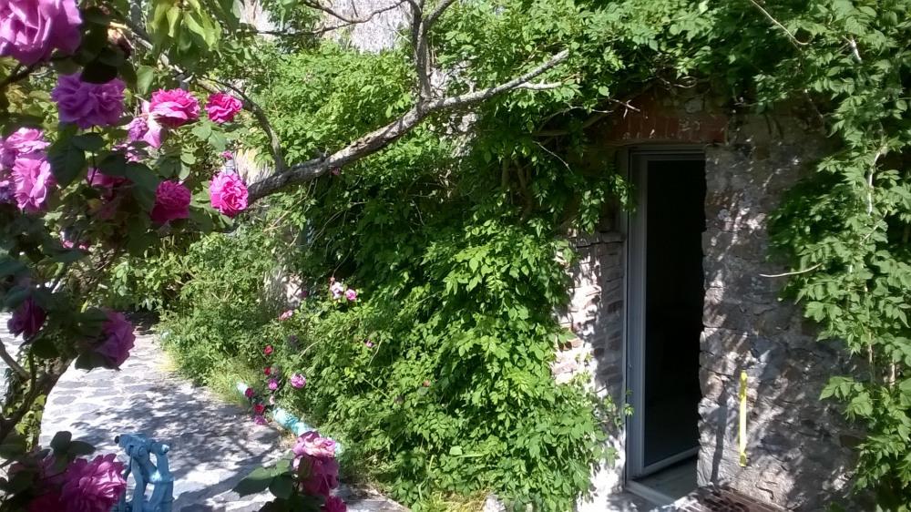 Côté terrasse - accès au salon