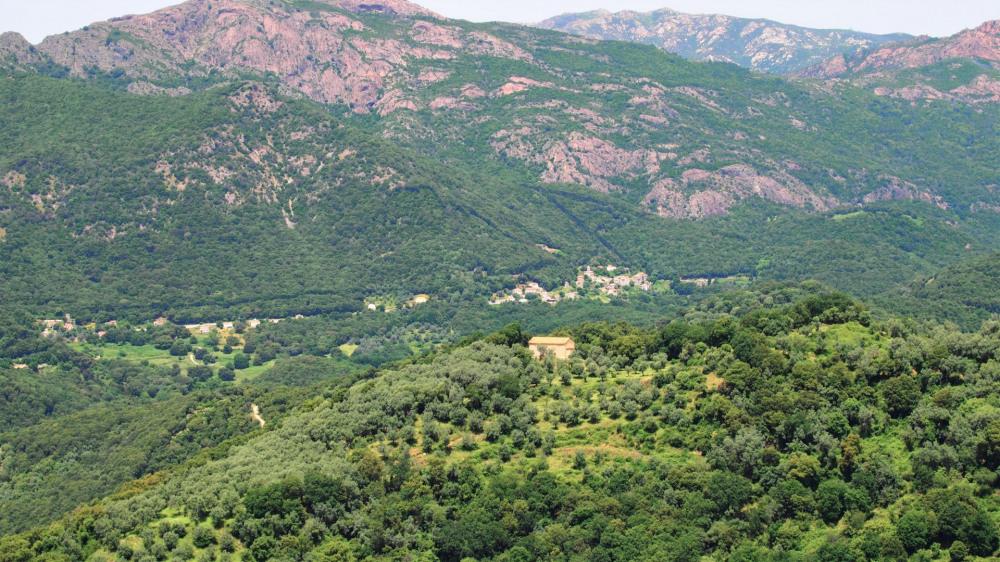 vue des terrasses