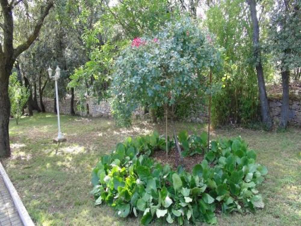 Un autre regard sur le jardin