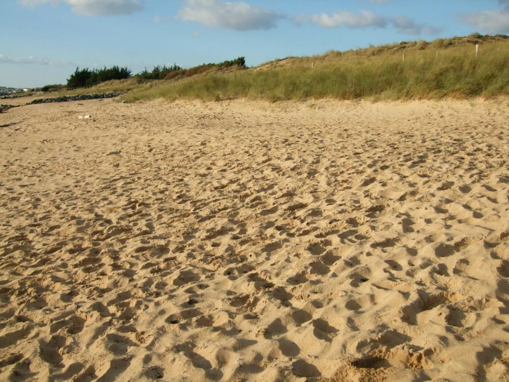Bienvenue sur les plages de la Coti