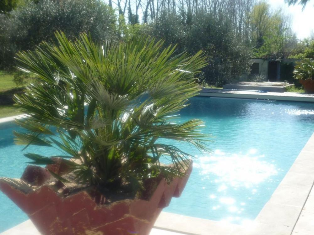 Maison l 39 isle sur la sorgue pour 8 personnes 90695986 for Prix piscine 12x6