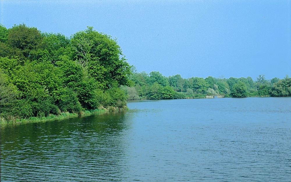 lac d'Apremont