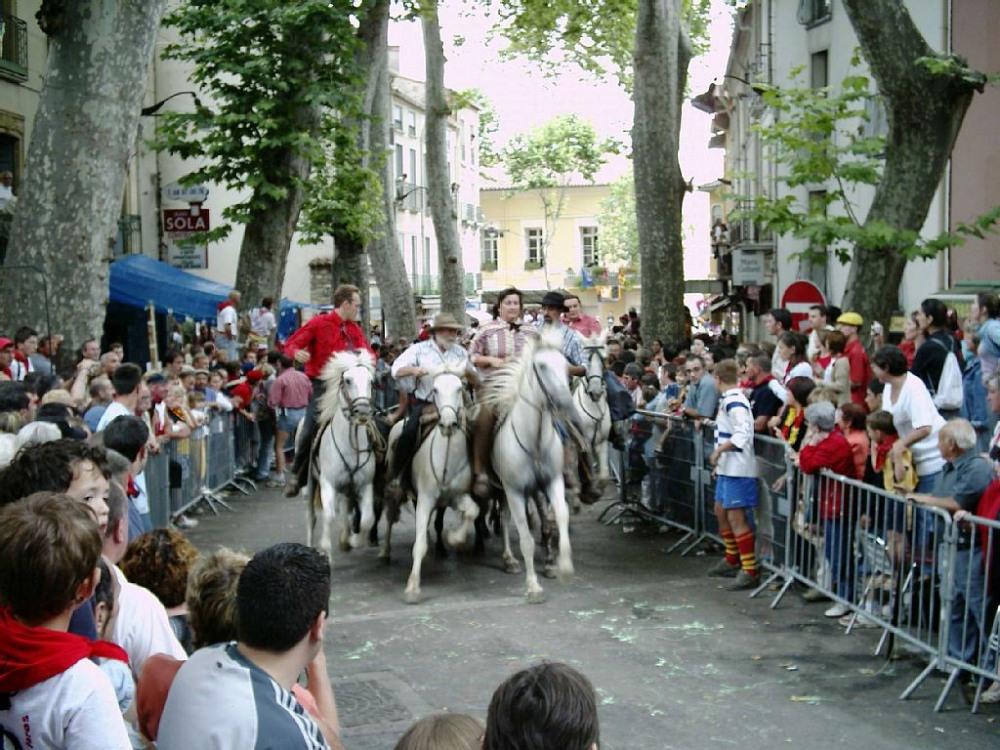 Feria ceret