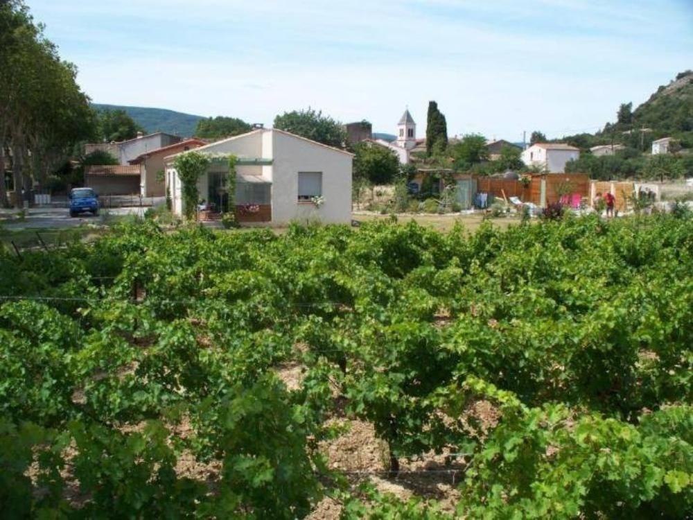 Le gîte grenache entourés de vignes
