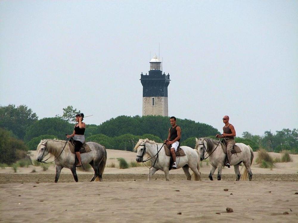 Promenade à cheval autour du phare de l'espiguette