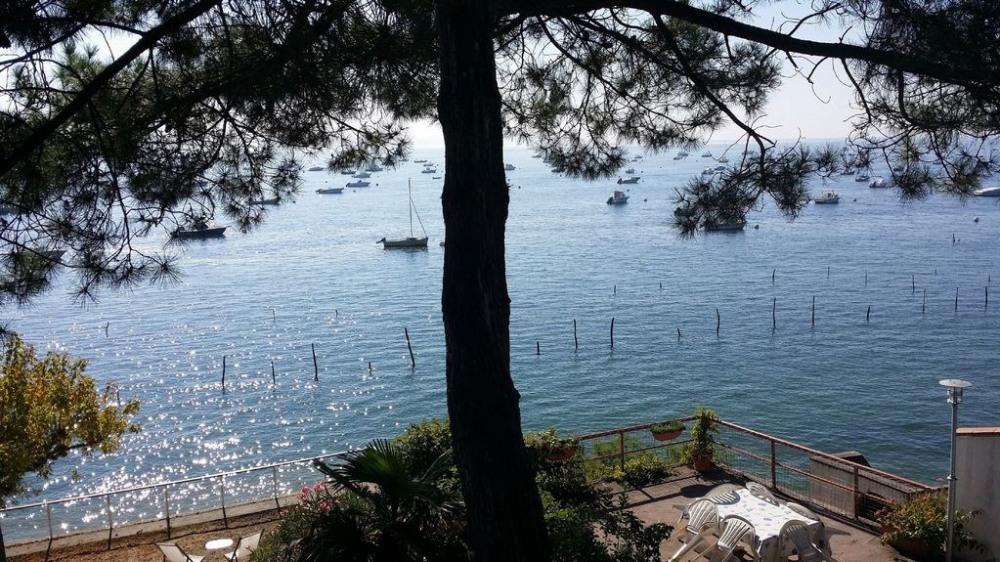 Location vacances Lège-Cap-Ferret -  Maison - 15 personnes - Barbecue - Photo N° 1
