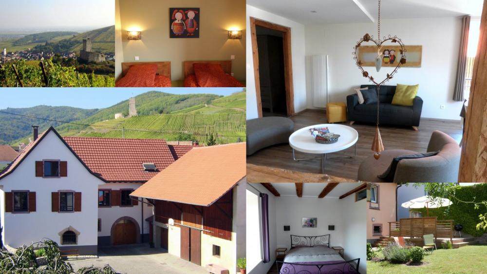 4*charme,idéal visites Alsace, proche Europa-Park ,terrasse,jardin. - Katzenthal