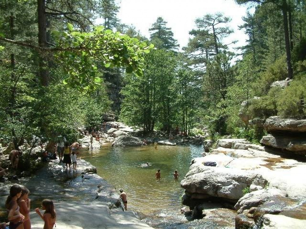 forêt Aïtone