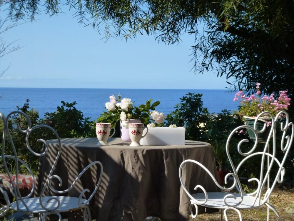 Jardin privatif avec vue sur mer