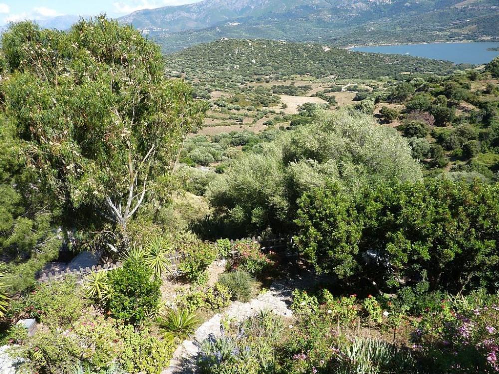 les chemins de randonnée conduisent à travers le maquis vers le lac (20mn)
