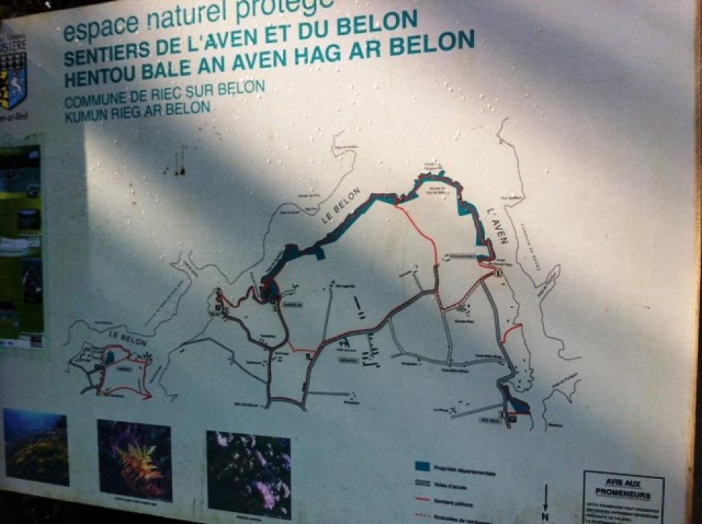 Sentiers de randonnées sur le sentier des douaniers (GR34)