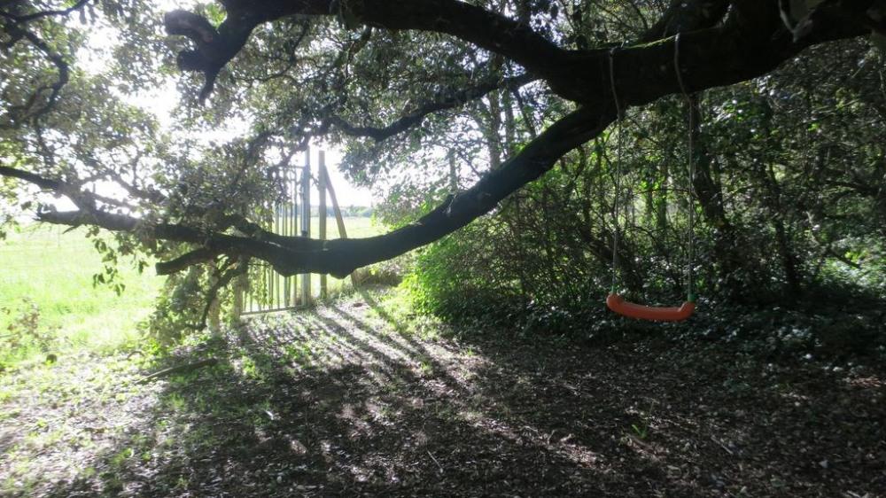 Un coin du jardin vers le champs du Fort de la pointe de Suzac