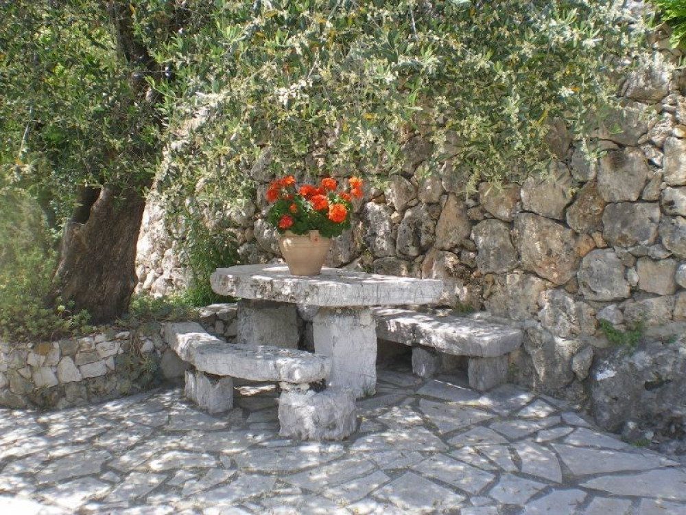 A little shaded niche in the garden
