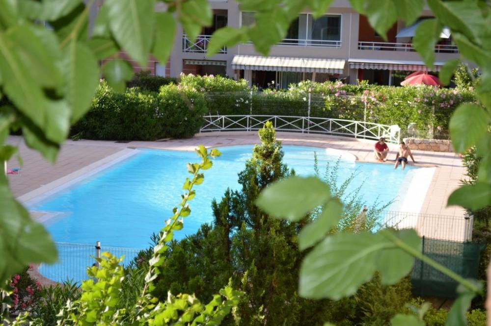 piscine vue feuillage