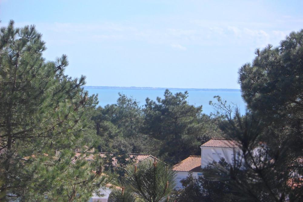 vue sur Ile de Ré de la forêt domaniale