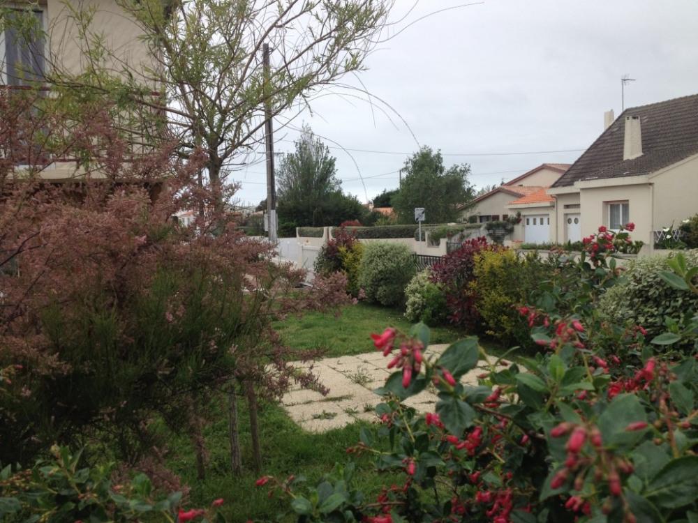 Jardin terrasse portail automatique