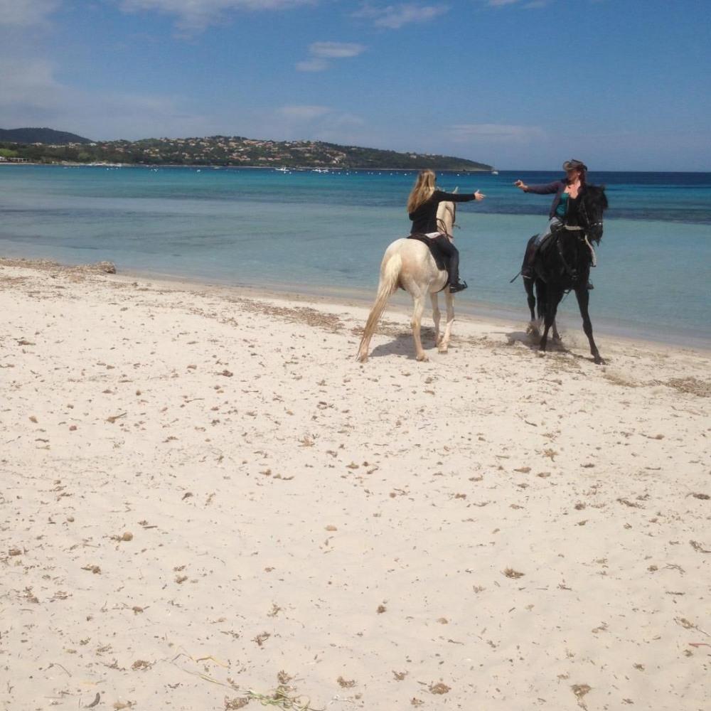 possibilité de faire du cheval et autres activités sur la plage