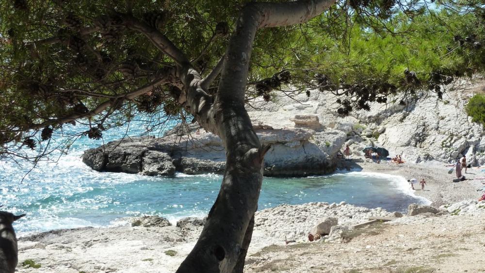 Rez de jardin à Carry le Rouet, vue sur mer, dans un joli cadre calme et agréable.