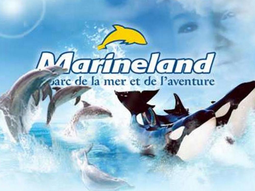 A 20 mn le parc de Marineland