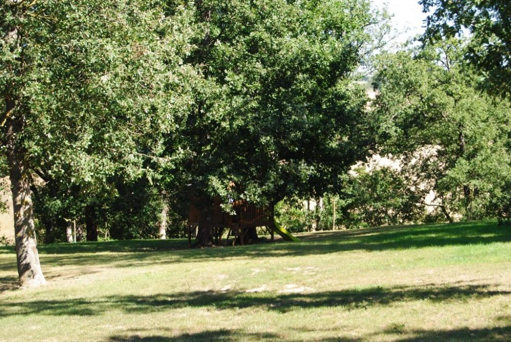 Le Parc avec les chênes...
