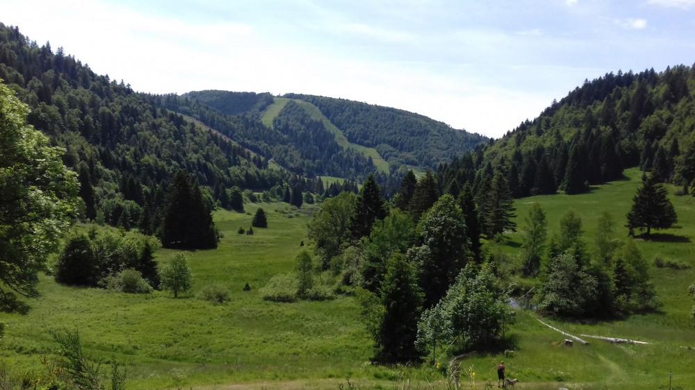 Appartement De Vacances à La Bresse En Lorraine Pour 4 Pers