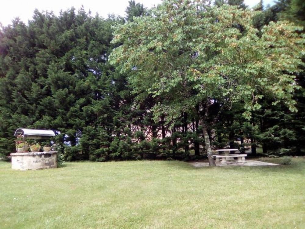 jardin avec salon extérieur