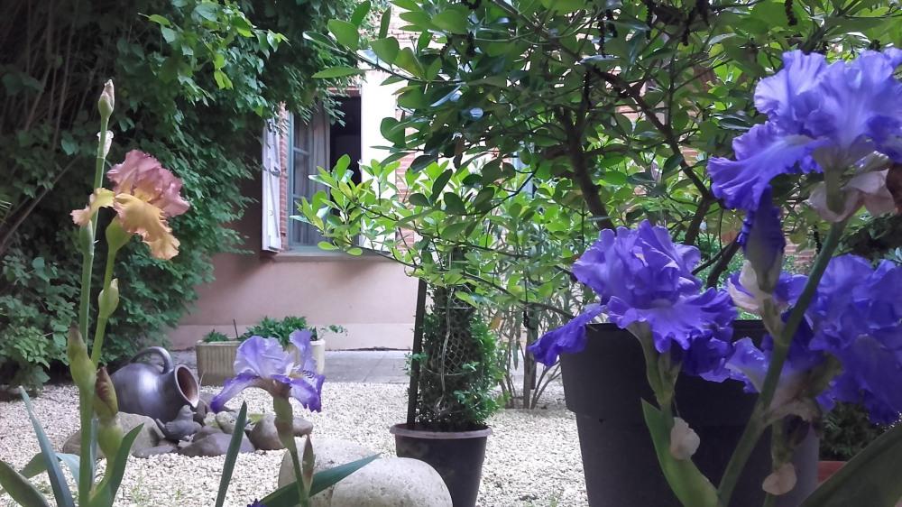 Location vacances Beaumont-de-Lomagne -  Appartement - 5 personnes - Chaise longue - Photo N° 1