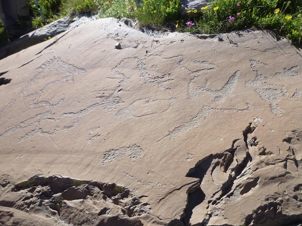 gravures rupestres vallée des Merveilles à pieds ou en 4x4 accompagné par guide