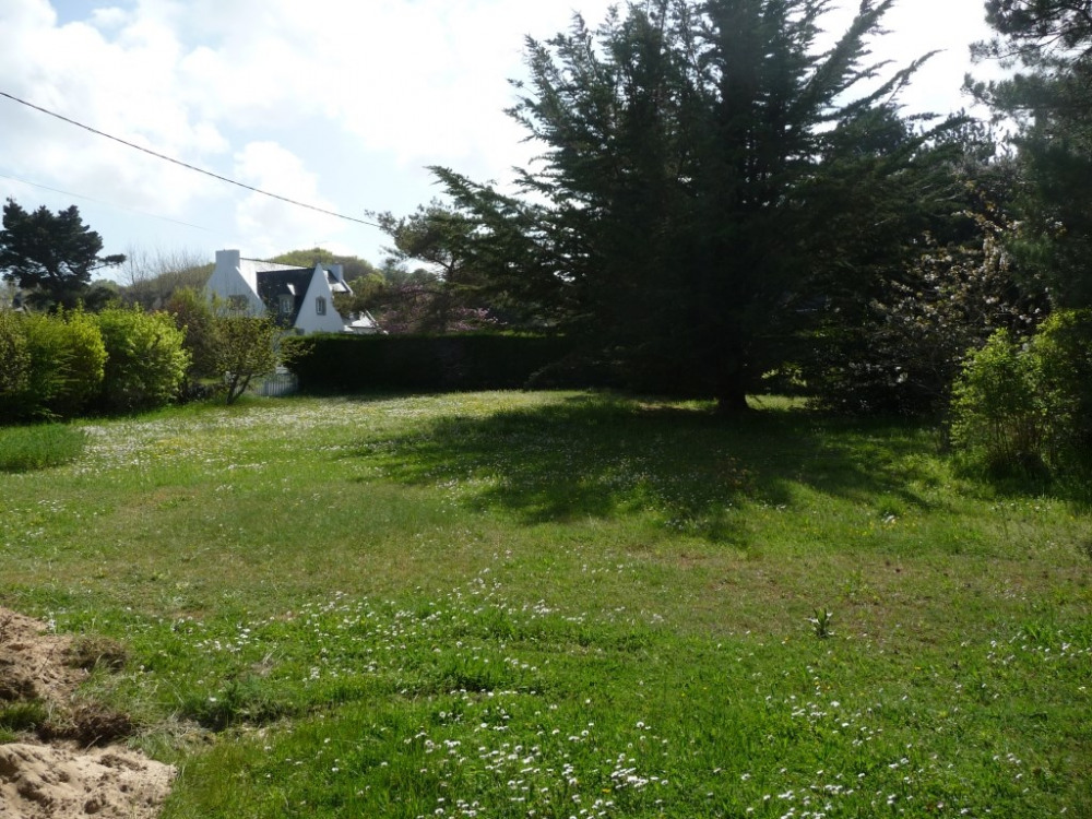 Jardin à gauche de la villa
